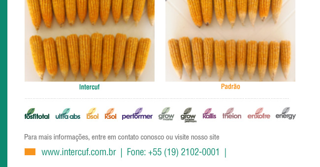 Intercuf - Informativo
